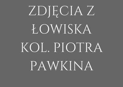 ZDJĘCIA Z ŁOWISKA KOL. PIOTRA PAWKINA